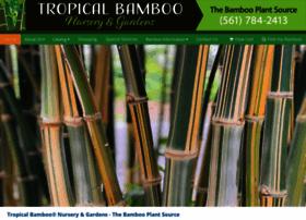 tropicalbamboo.com