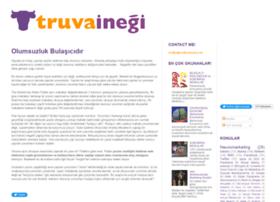 truvainegi.com