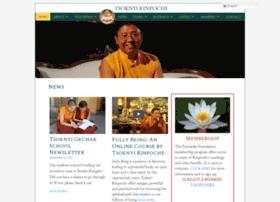 tsoknyirinpoche.org
