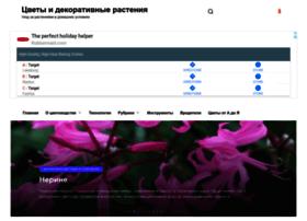 tsvetem.ru