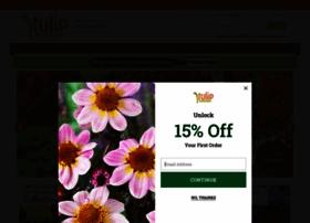 tulipworld.com