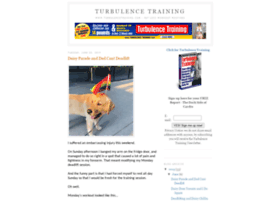 turbulencetraining.blogspot.com