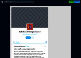 turbulencetrainingreviewed.tumblr.com
