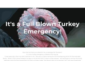 turkeyemergency.com