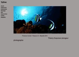 tydive.com