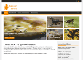 typesofinsects.com