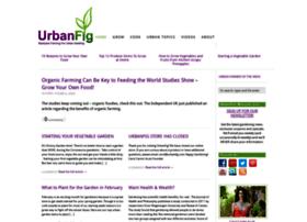 urbanfig.com