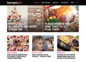 usengecsef.com