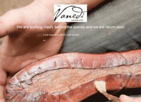 vanedi.com