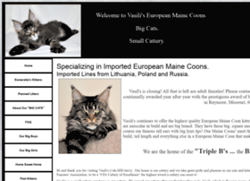vasilismainecooncats.com