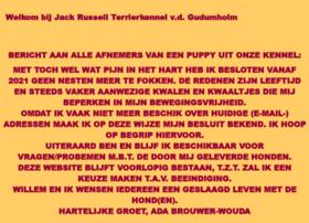 vdgudumholm.nl