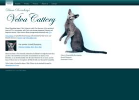 velvacattery.com