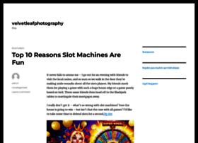 velvetleafphotography.com