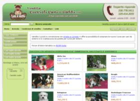 vendita-cuccioli-caniegatti.com