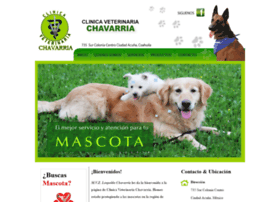 veterinariachavarria.com.mx