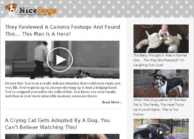 video-20.nicedogs.tv