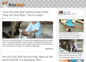 video-25.nicedogs.tv