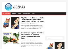 vidzmax.com