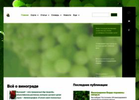vinograd.info