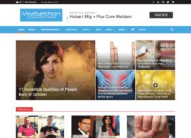 viralsection.com