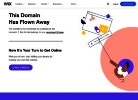 visualingelect.com