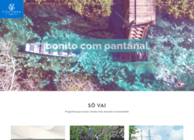 vivaterra.com.br