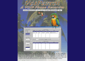 voiparrot.com