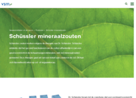 vsmschussler.nl