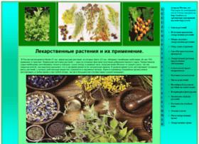 vzfei.ru