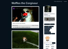 wafflesthecorgi.com