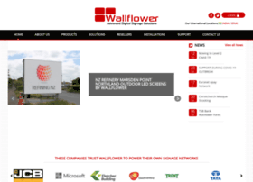 wallflowerglobal.com