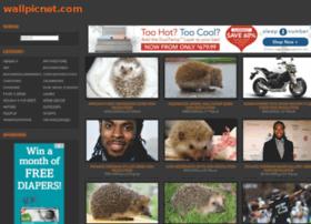 wallpicnet.com