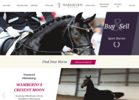 warmbloods-for-sale.com