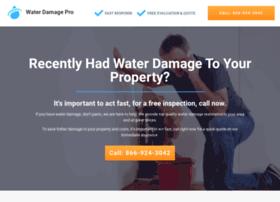 water-damage-pro.com