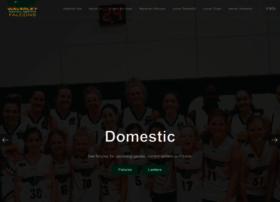 waverleybasketball.com