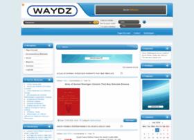 waydz.com