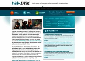 web-dvm.net