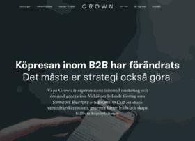webbstrategerna.se