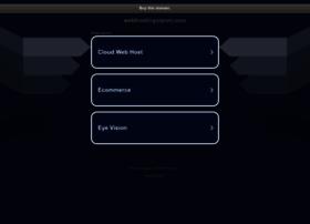 webhostingvision.com