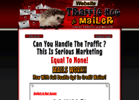 Website-traffic-hog.com
