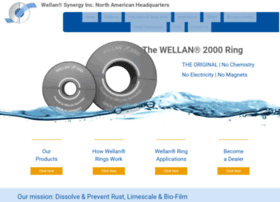 wellansynergy.com