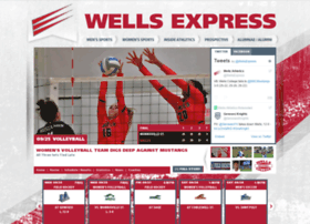 wells-express.com