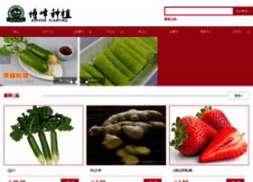 wfbofeng.com