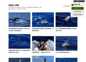 whale-world.lofter.com