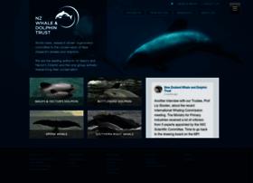 whaledolphintrust.org.nz