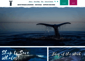 whales.org