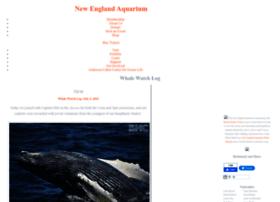 whalewatch.neaq.org