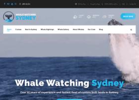 whalewatchingsydney.com.au