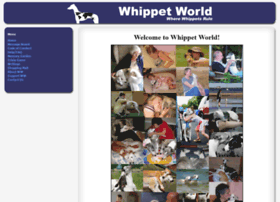 whippetworld.net
