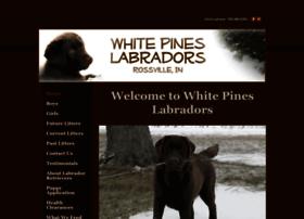 whitepineslabs.com